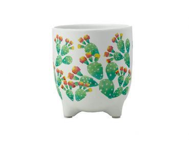 Royal Botanic Garden Arid Garden Planter Pot 14cm Prickly Pear