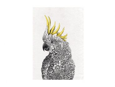 Marini Ferlazzo Birds Tea Towel 50x70cm Sulphur-crested Cockatoo