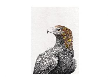 Marini Ferlazzo Birds Tea Towel 50x70cm Wedge-tail Eagle