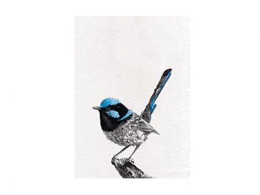 Marini Ferlazzo Birds Tea Towel 50x70cm Superb Fairy-wren