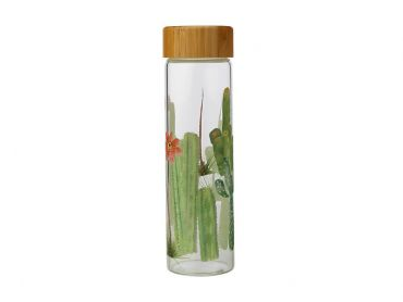 Royal Botanic Garden Arid Garden Glass Water Bottle 550ML Saguaro