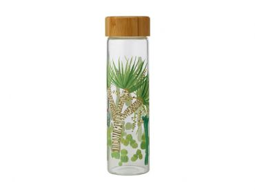 Royal Botanic Garden Arid Garden Glass Water Bottle 550ML Dracaena
